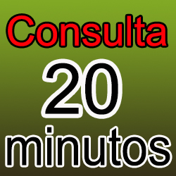 Consulta 20 min