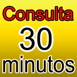 Consulta 30 min